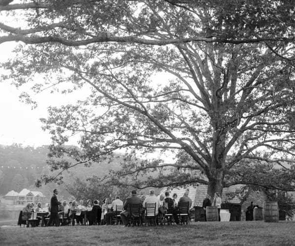 Wine dinner under the Oak tree