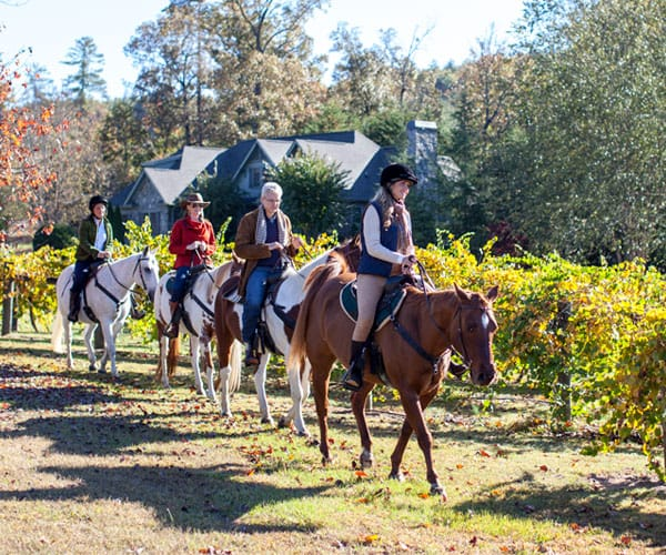 Members on a Trail Ride at The Cliffs at Keowee Vineyards Equestrian Center