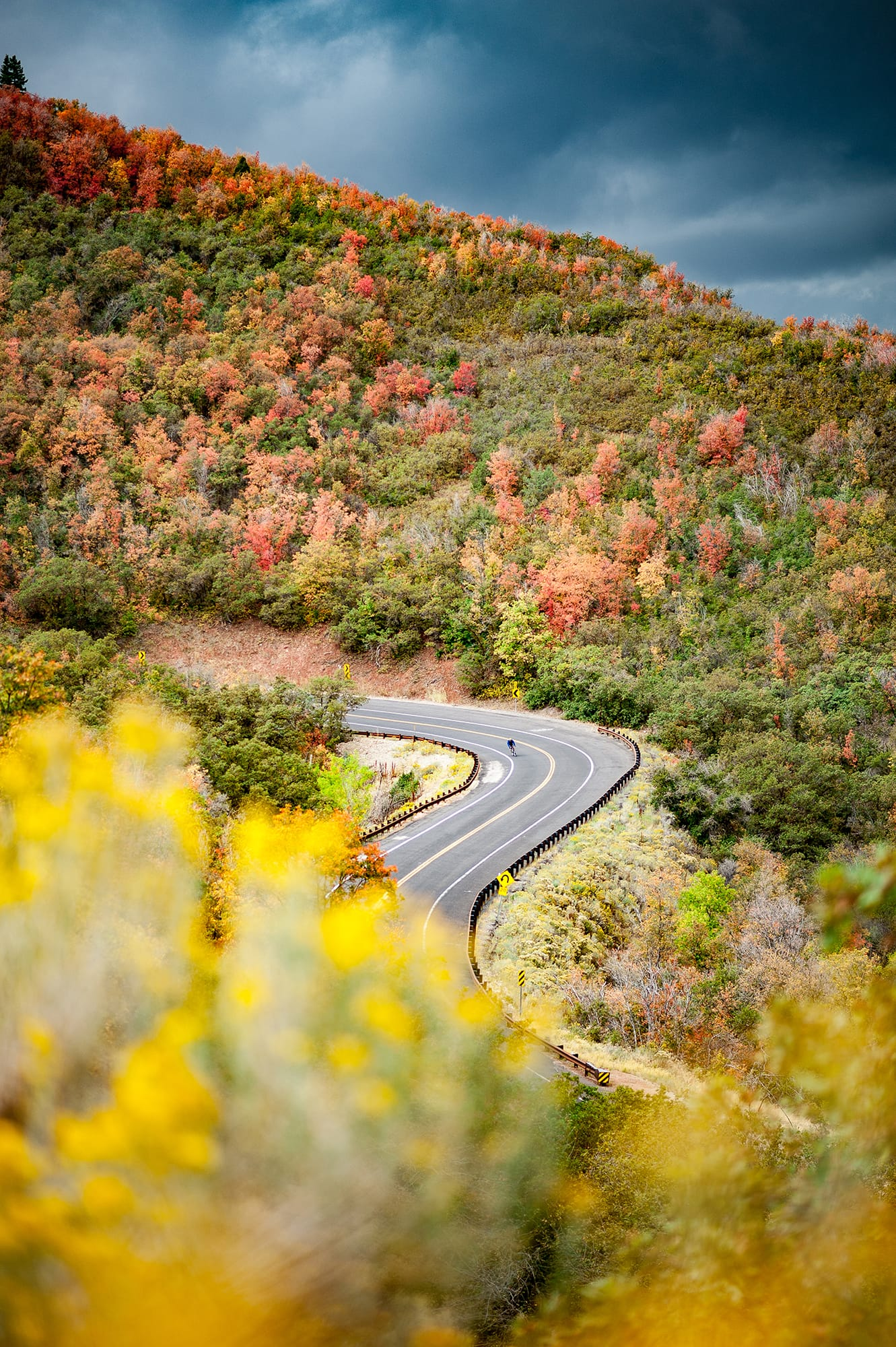 Cyclists coming down the Blue Ridge Parkway
