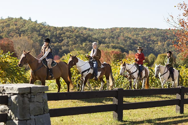 Keowee Vineyards Equestrian