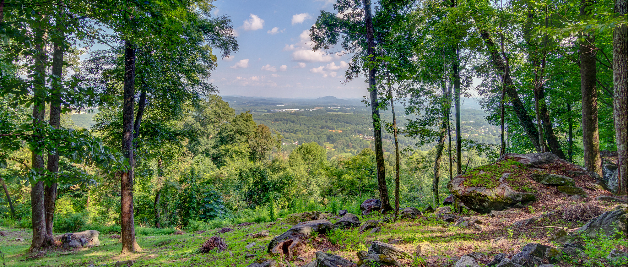 Southridge View | The Cliffs at Walnut Cove